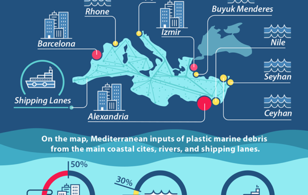 Marine Litter in the Mediterranean Sea - Foresight - CMCC
